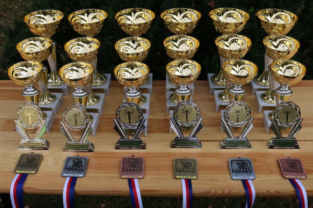 Mistrovské medaile a poháry pro nejlepší